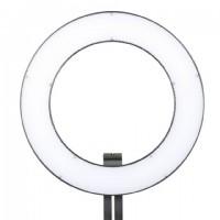 Falcon Eyes Bi-Color LED Ringlamp Dimbaar DVR-384DVC op 230V